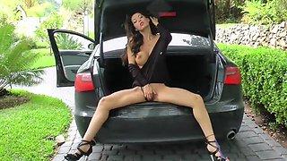 Astekangel in the car