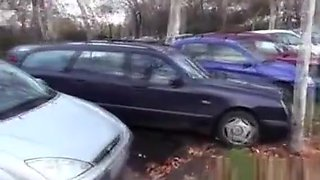 Pulled Eurobabe Facialized Outdoors After Car Fuck