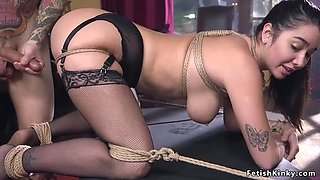 Curved brunette maid fucked in bondage