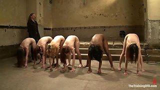 Day 1- Seven Slave Intake