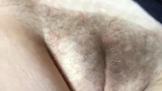 Grosse chatte poilue