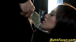 Glamour babe analfucked doggystyle